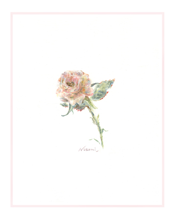 A Little Rose in My Heart